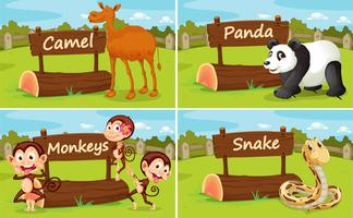 Wild animals by the wooden sign