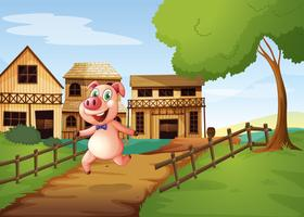 A pig running happily