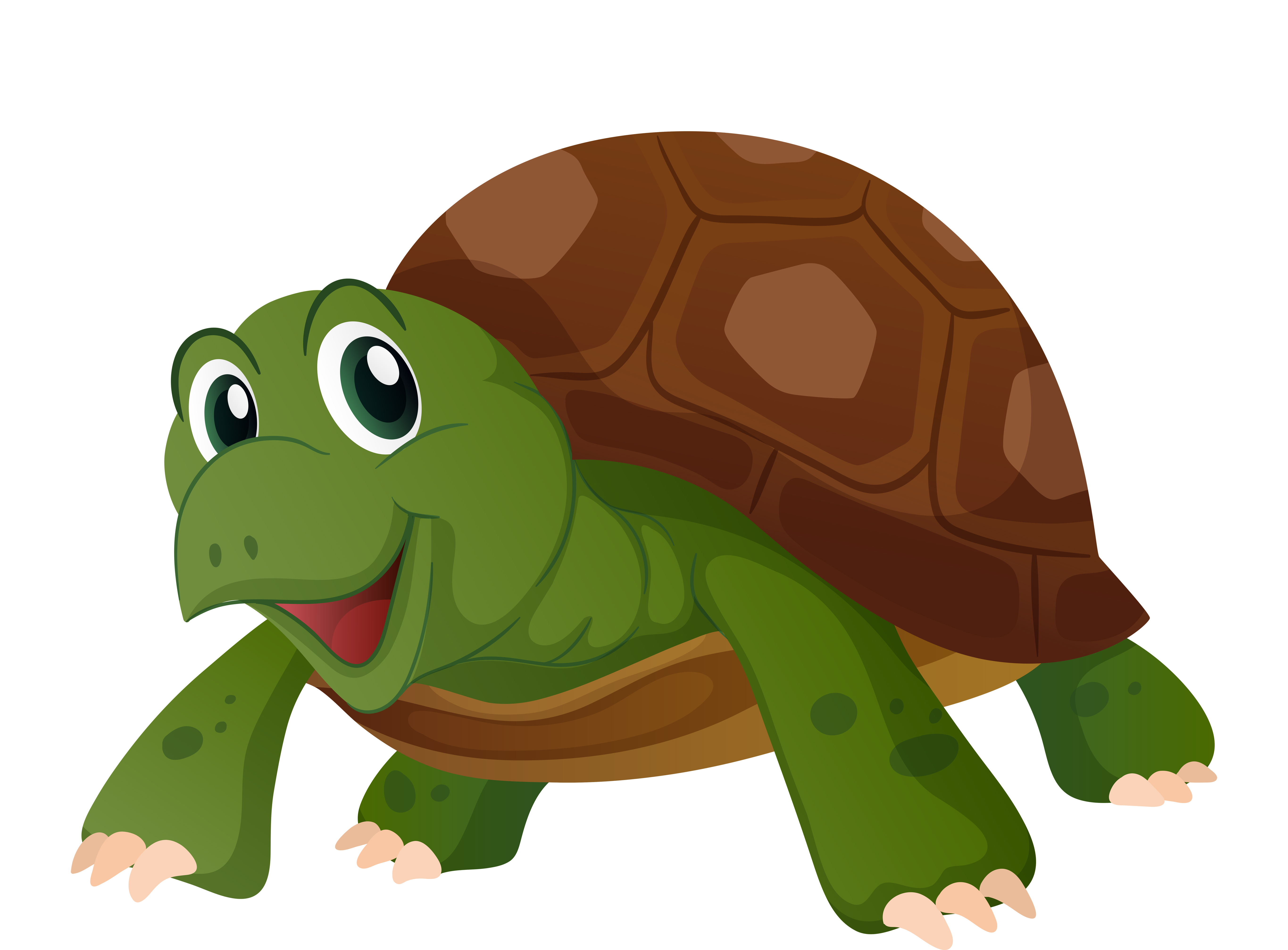 Cute Turtle With Happy Face Download Free Vectors Clipart