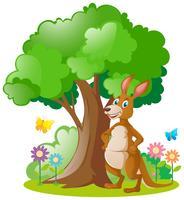 Canguru em pé debaixo da árvore