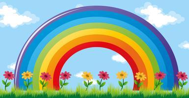 Kleurrijke regenboog in de tuin