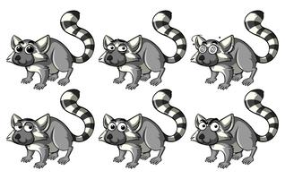 Lemur with different emotions