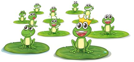 Happy frogs on lotus leaves
