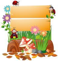 Planche de bois et de nombreux types d'insectes