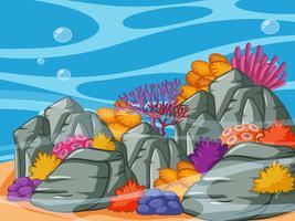 Escena submarina con arrecifes de coral y rocas