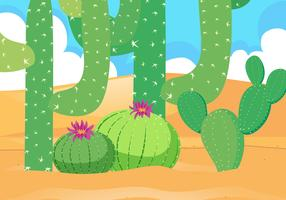Desert field with beautiful cactus