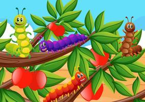 Kleurrijke rupsen op appelboom