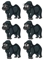 Gorilla with different emotions