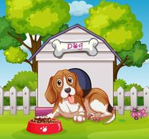 Puppy living in doghouse
