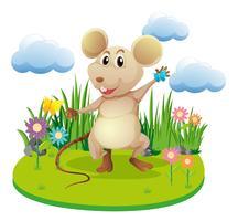 Petit rat debout dans le jardin