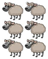 Sheep with different facial expressions