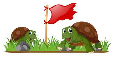 Tortugas y bandera roja en el jardín.