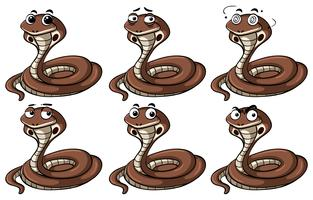 Cobra snakes with different emotions