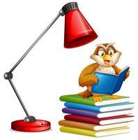 Um, coruja, livro leitura
