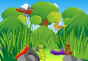 Caterpillars e libellule in giardino