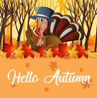 Turkey and orange autumn template vector