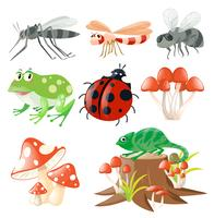 Olika typer av insekter