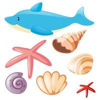 Conjunto mar con delfines y conchas marinas.