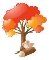 Búho de pie en el registro bajo el árbol