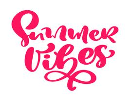 Summer vibes hand drawn lettering calligraphy vector text