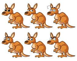 Kangaroo with different emotions