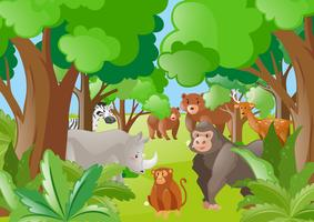 Wild animals in the green forest vector