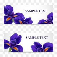 A set of cards or postcards with realistic iris flowers