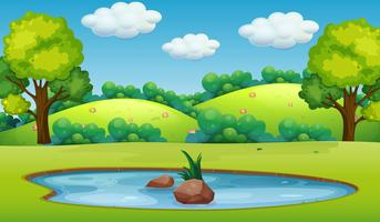 Un paisaje de estanque natural.