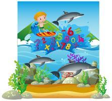 Zahlen zählen mit Jungen auf Surfbrett