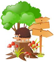 Wooden signs and hedgehog on stump tree