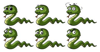Green snakes with different emotions