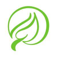 Logo av grönt blad av te. Ekologi naturelement vektor ikon. Eco veganisk bio kalligrafi handritad illustration