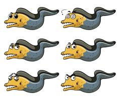 Anguille avec différentes émotions