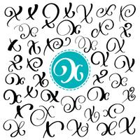 Set of Hand drawn vector calligraphy letter X