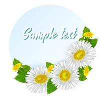 A real bouquet of chamomiles and dandelions. Round sticker or label on a blue background. Vector illustration