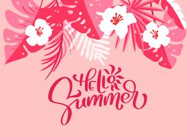 Text Hello Summer in floral palm leaves background
