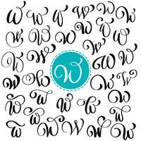 Conjunto de letra de caligrafia de mão desenhada vector W