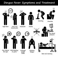 Dengue Fever Symptoms and Treatment Aedes Mosquito Stick Figure Pictogram Icons.