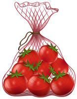 Fresh tomatoes in net bag