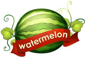Watermelon with red banner