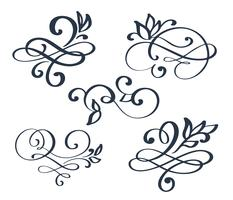 Vintage set hand drawn flourish separator