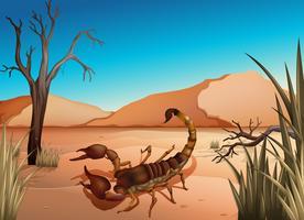Een woestijn met een schorpioen