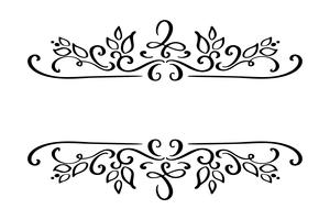 Hand drawn border flourish separator Calligraphy designer element