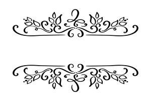 Hand drawn border flourish separator Elemento de designer de caligrafia