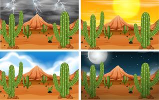 Ensemble de scène du désert