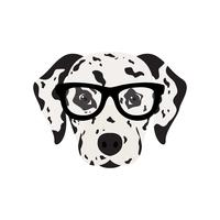 Dalmatian dog in glasses.