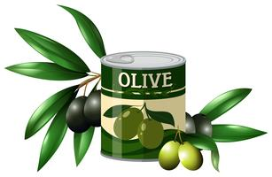 Fresh olive and olive in can