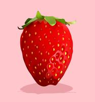 Fresh strawberry with stem on
