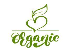 Ejemplo orgánico verde de la caligrafía del diseño de la plantilla del logotipo del vector de la naturaleza del vegano, diseño de la comida. Letras manuscritas para restaurante, cafe de menú sin procesar. Elementos para etiquetas, logos, insignias, pegati