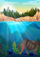 Scena con alberi di pino e sott'acqua